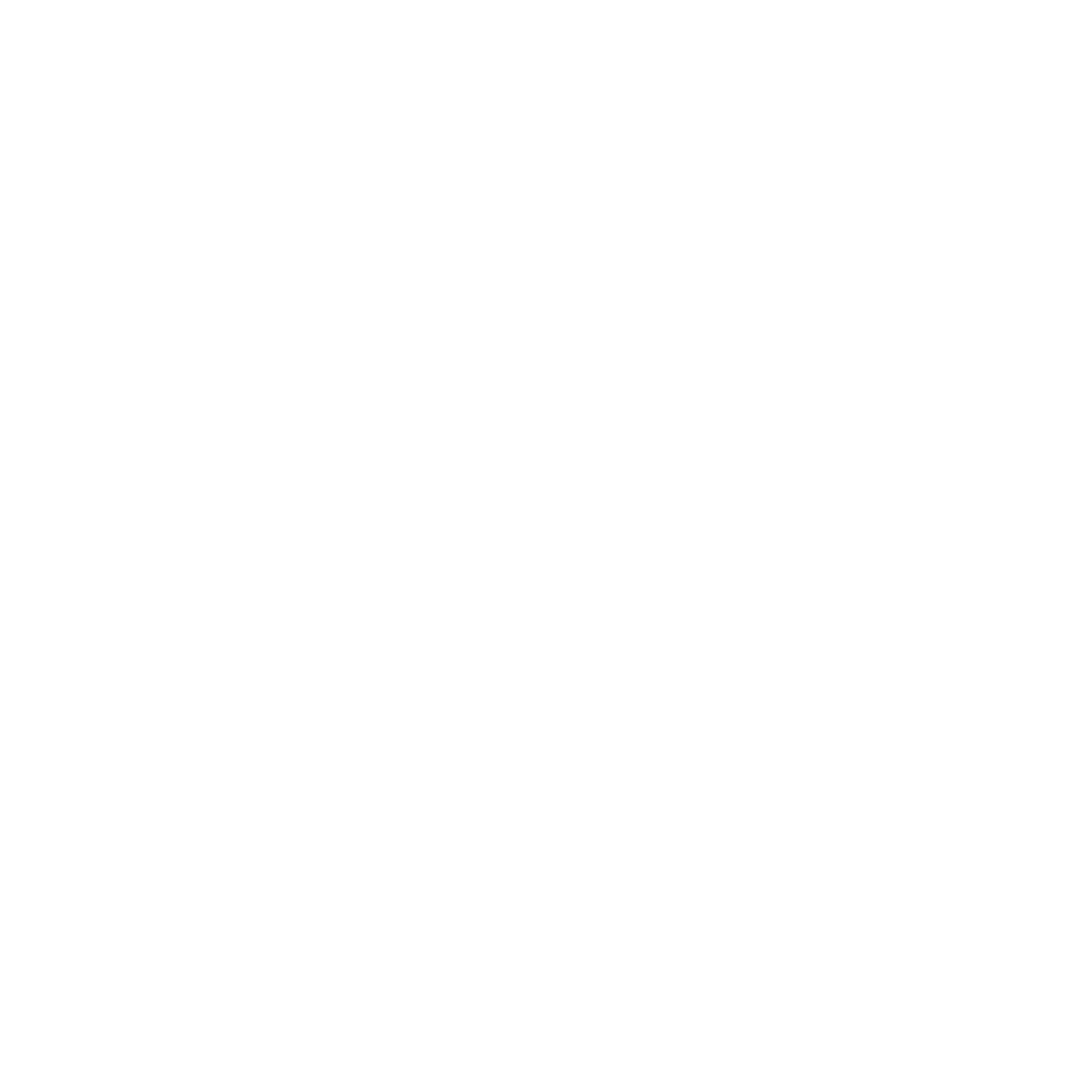 Portfolio Item Logo
